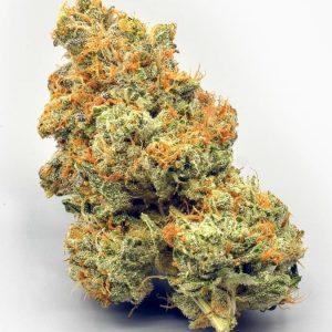 Sativa Marijuana Flowers USA