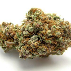 Indica Cannabis Flowers USA